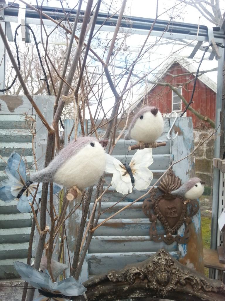 2016, mars, filtade fåglar